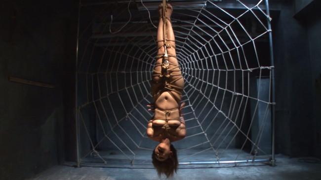 【おっぱい】緊縛プレイの最高峰!逆さ吊りで縛られちゃっている女性のおっぱい画像がエロすぎる!【30枚】
